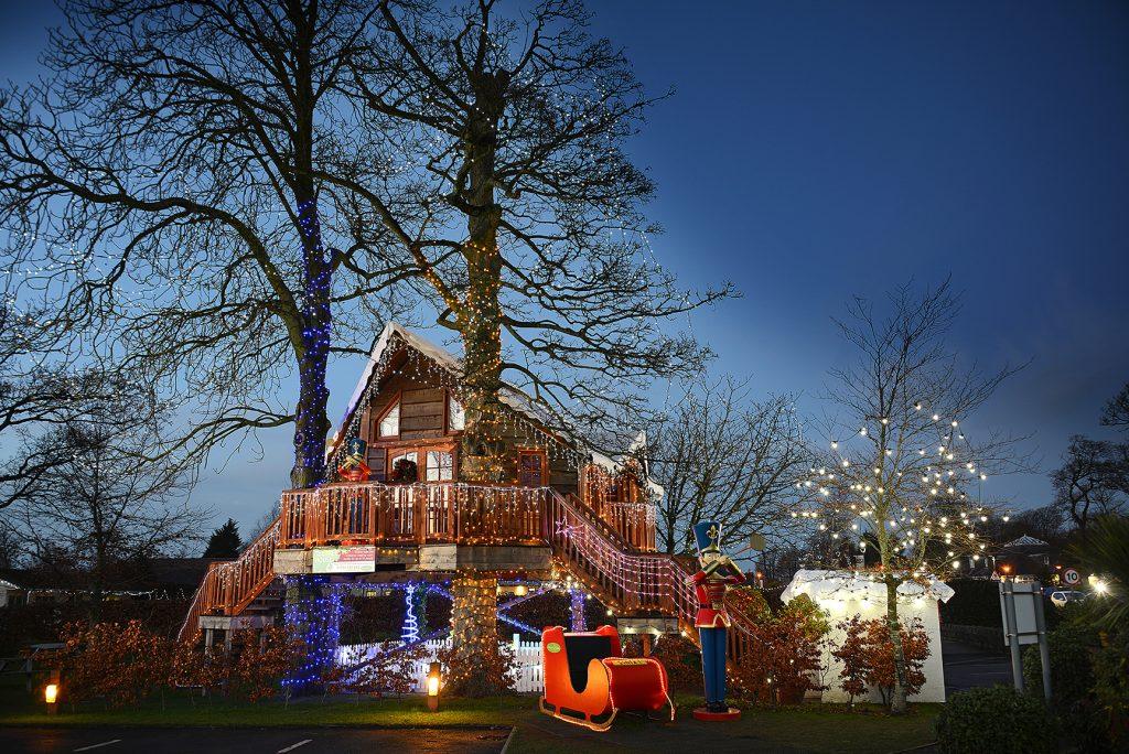 Tree House Lights